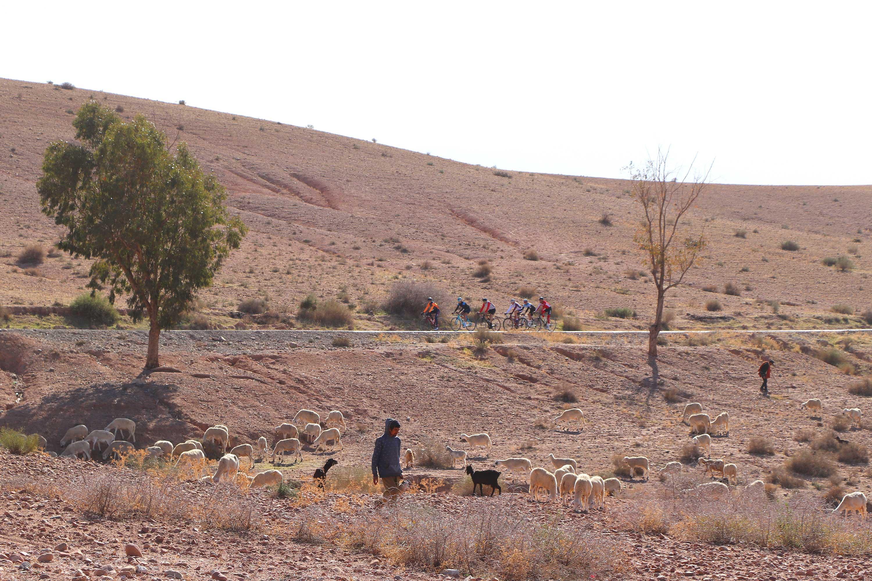 Stage cycliste Maroc 03